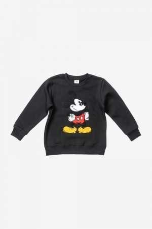 Mickey Mouse Embroidered Fleece Sweatshirt